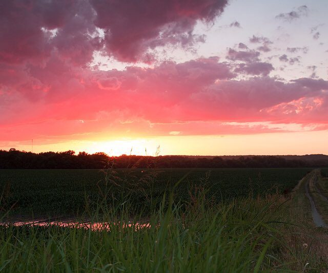 Open fields country roads and wild sunsets always leave ahellip